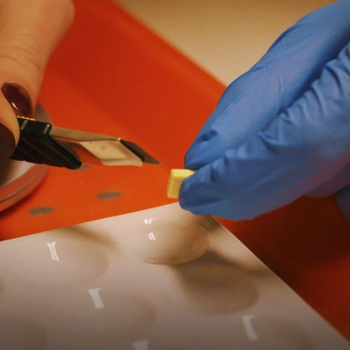 Afbeelding van Drugs testen: Nellie zoekt het uit | Drugslab Extra